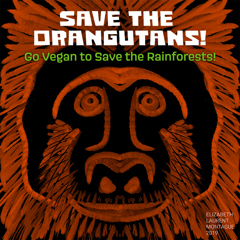 Save the Oangutans!